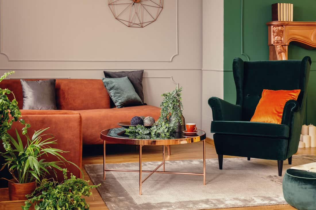 Urban jungle in beautiful living room with grey, orange and green interior
