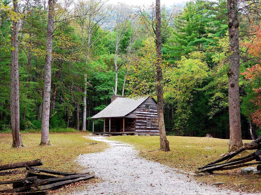 Way to a small log cabin