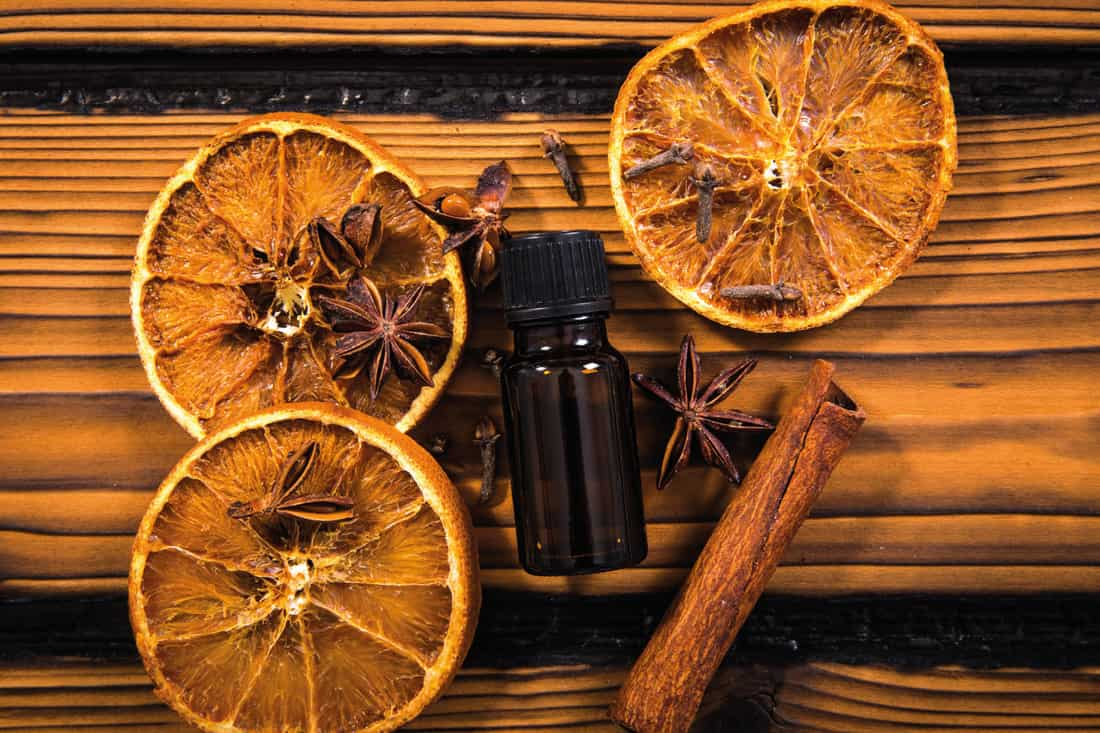 Winter essential aroma oil concept. Flat lay view of various spices: cinnamon stick, clove, star anise, dried orange slices around small brown medical oil bottle