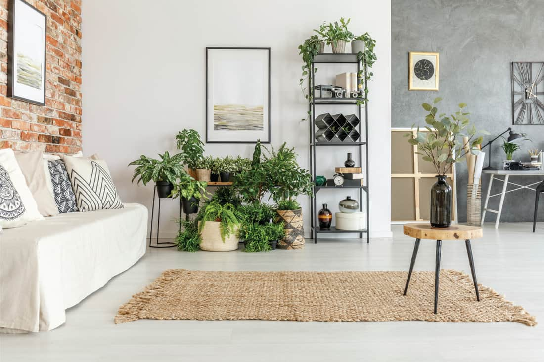 Wooden stool with black vase on brown carpet in bright living room with painting above shelf with plants. Plentiful, but out of the way