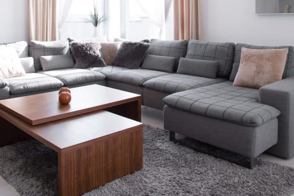 What Color Couch Goes With Gray Carpet? [7 Excellent Colors]