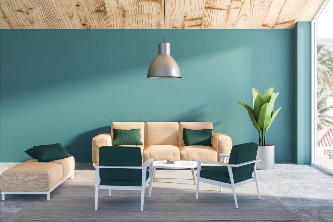 Green blue walls, concrete floor with beige couch and dark green armchairs and a neat coffee table