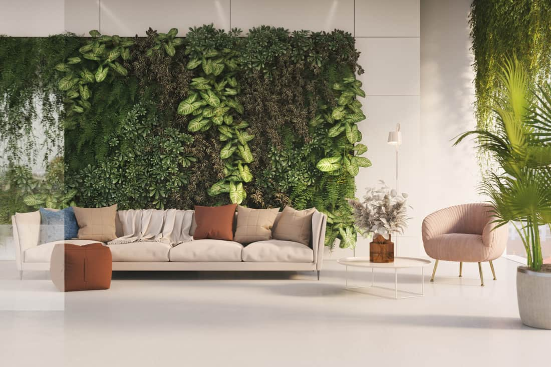 Green living room with hanging garden on a wall