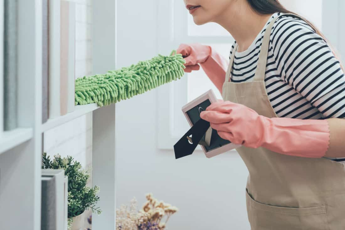 Housekeeper in apron dusting the bookshelf by feather duster in living room at home, young wife in rubber gloves doing housework