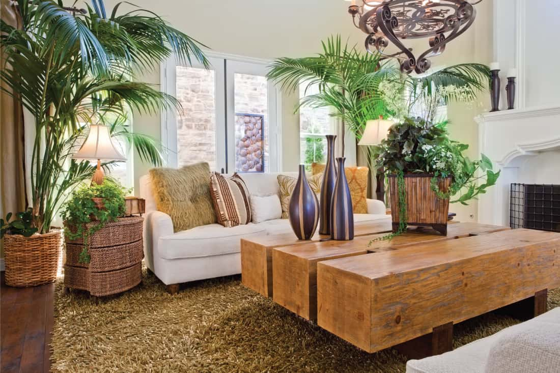 living room with large, green, and dominant plants. Natural-looking living room