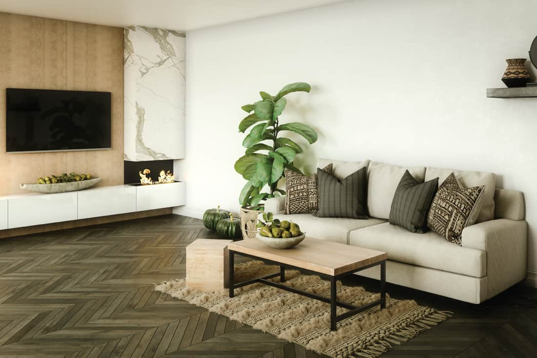 modern stylish living room with large indoor plant placed in place of an end table beside a sofa
