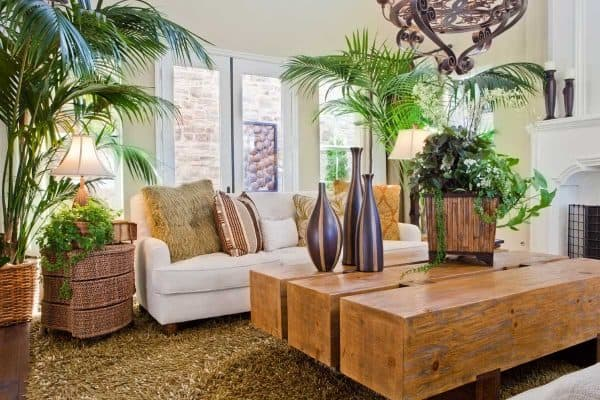 How To Arrange Plants In Living Room [7 Amazing Suggestions!]