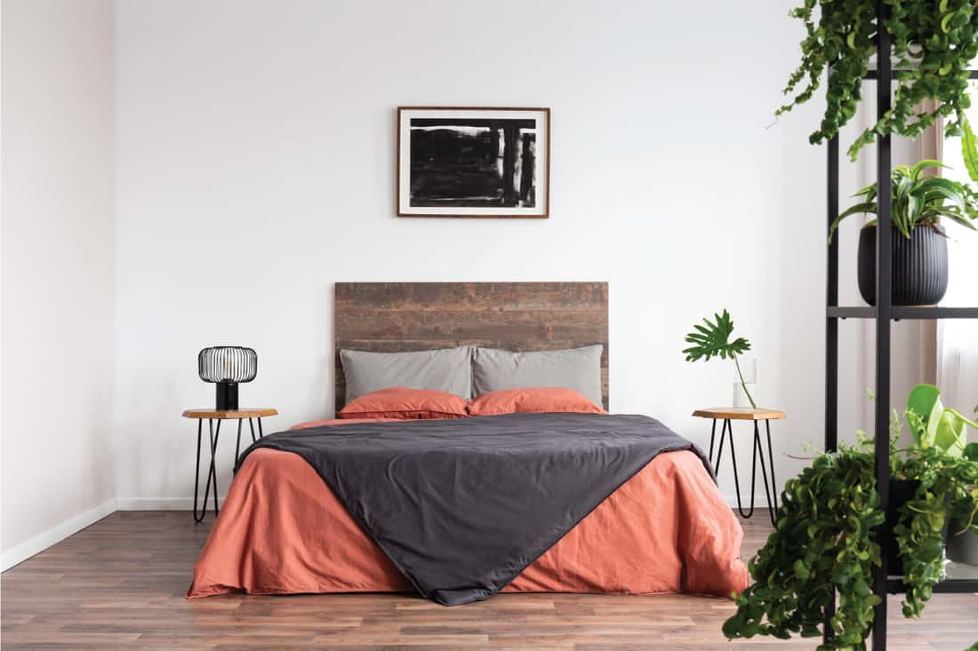 Back poster on the white wall of elegant bedroom interior with king size bed with wooden headboard