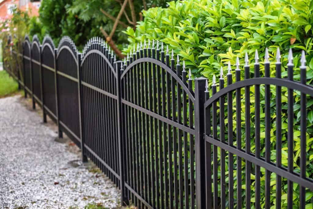 Black Wrought Iron Fence