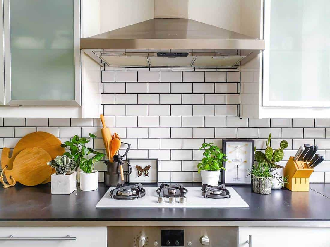 Black and white subway tiled kitchen with numerous plants and framed taxidermy insect art