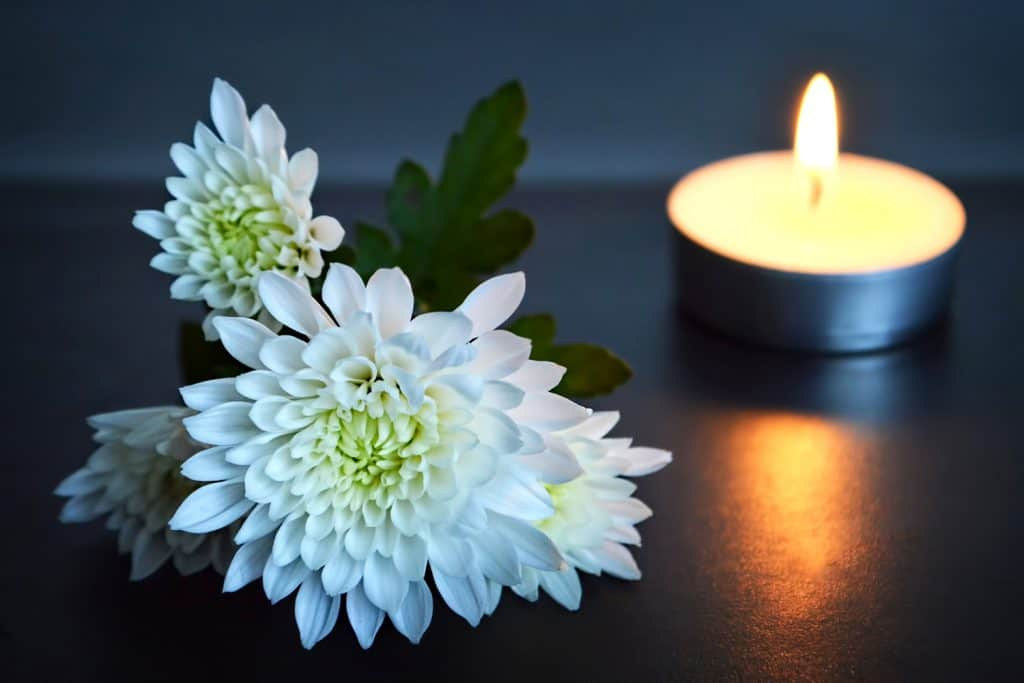 Candle and white flowers, floral scented candles