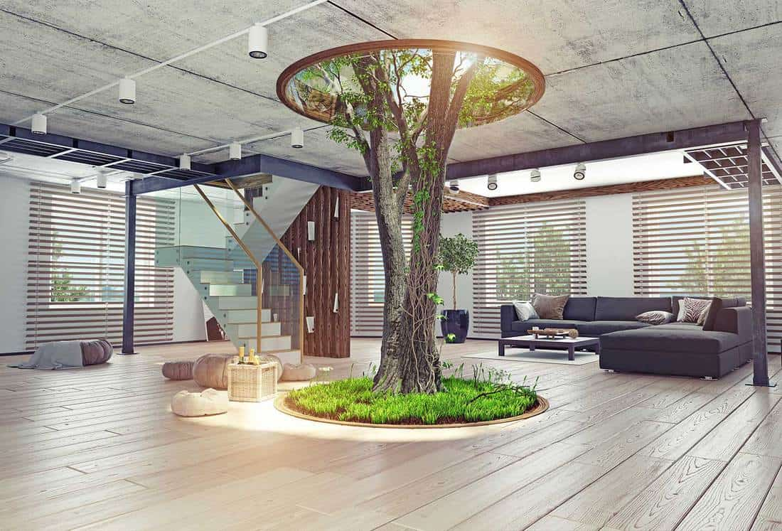 Eco design modern interior living room with real living tree indoor