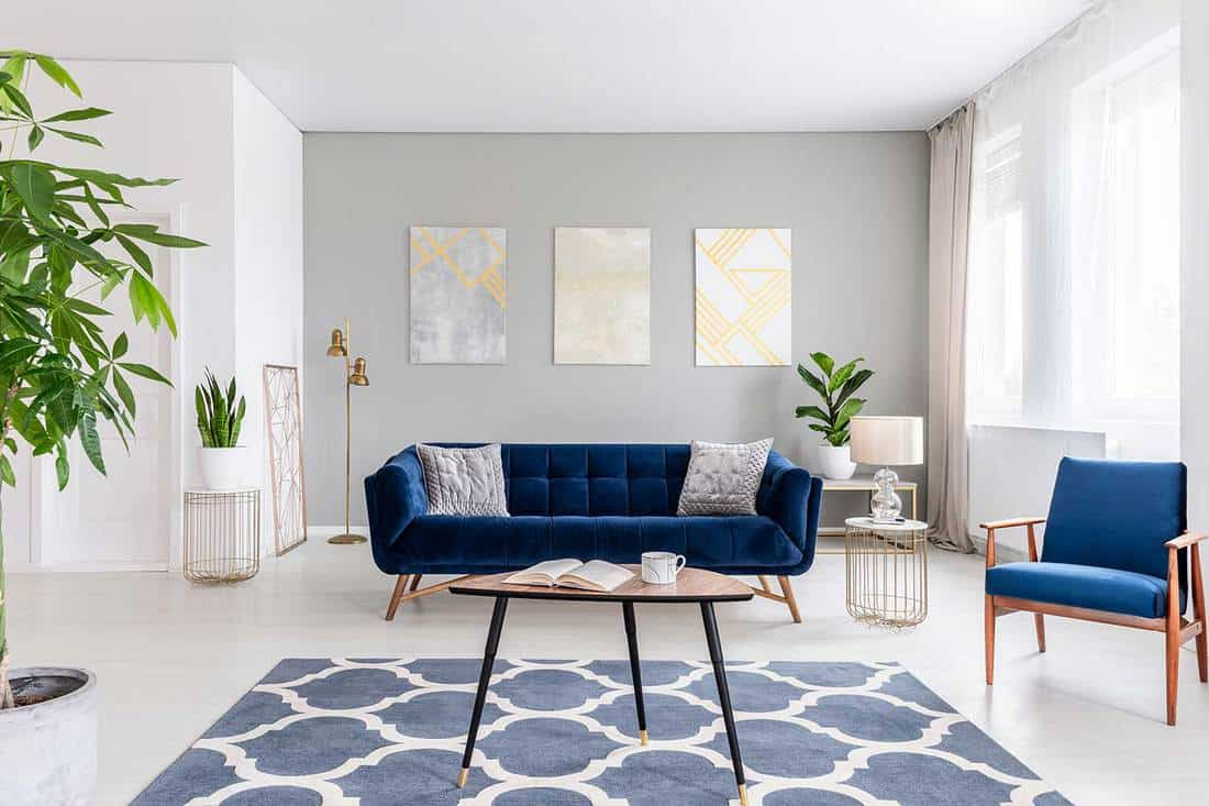 Elegant living room interior with a blue sofa, armchair, coffee table, patterned carpet and paintings on the gray wall