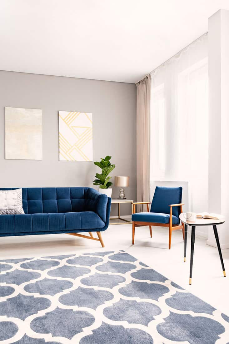 Elegant living room interior with a dark blue couch and a matching armchair. Large windows with drapes and a decorative rug