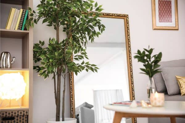 Read more about the article How To Fix A Cracked Mirror [7 Steps]