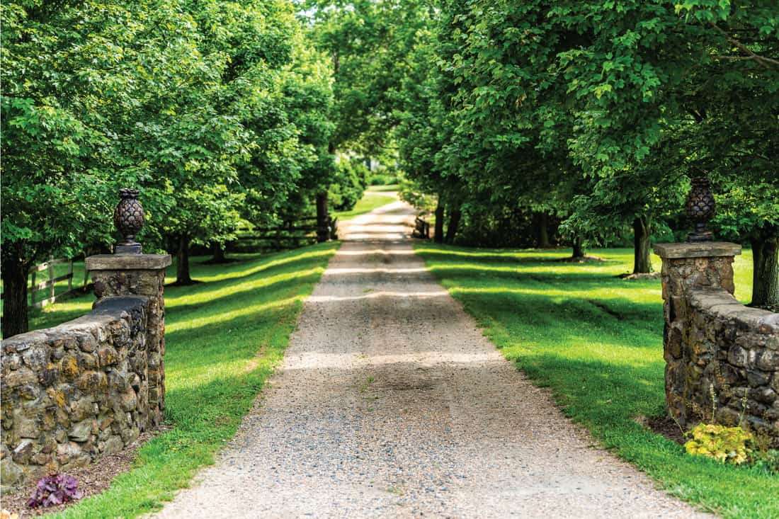 Gated open entrance with road driveway in rural countryside in Virginia estate with stone fence and gravel dirt path street with green lush trees in summer. Create A Formal Entrance For Your Gravel Drive