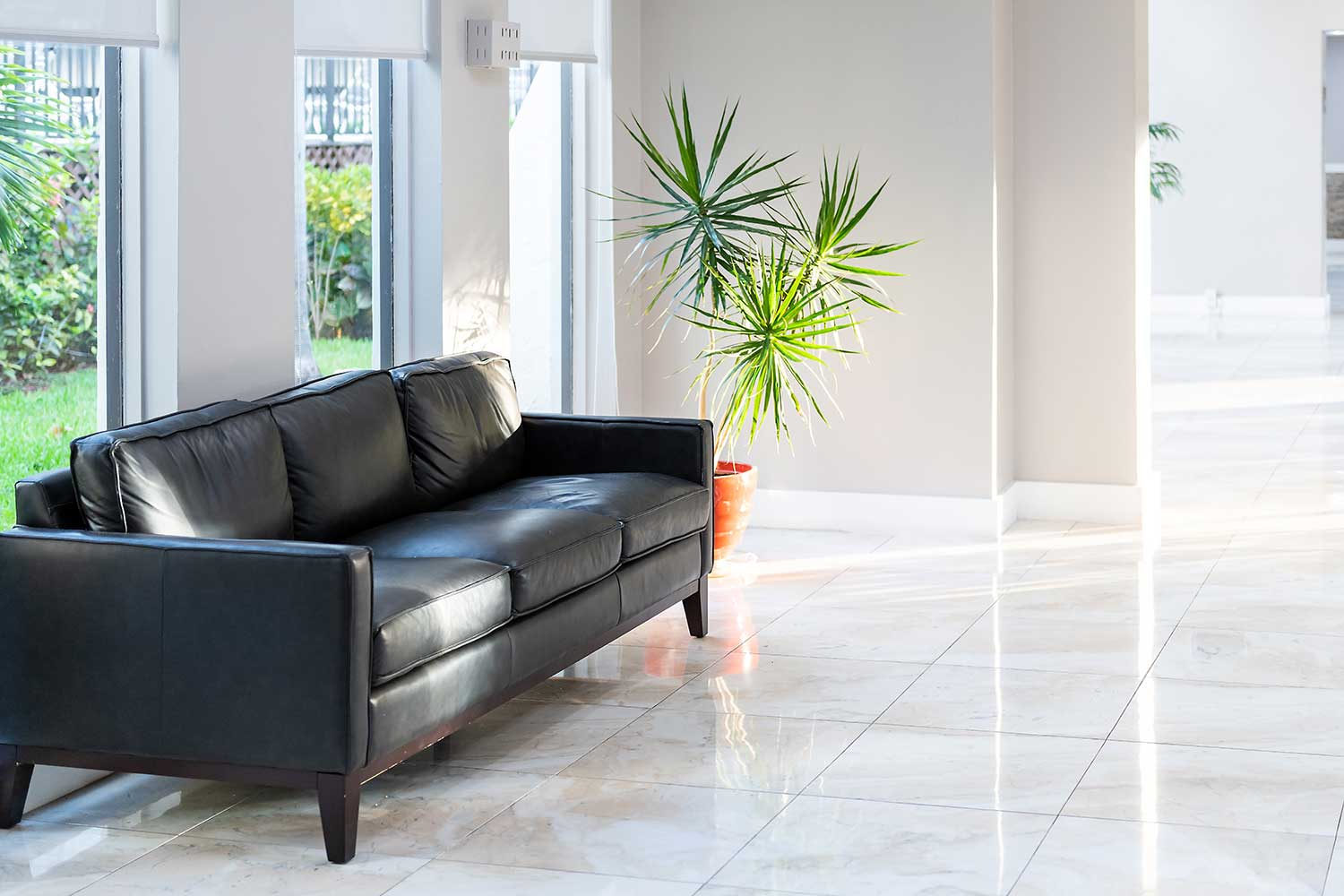 Hall room with tiled floor, black leather sofa and green potted palm tree