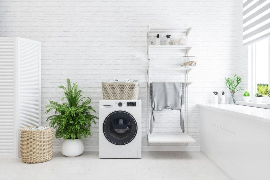 Interior of a white walled laundry room with indoor plants, a small washing machine on the center, and a divider on the side