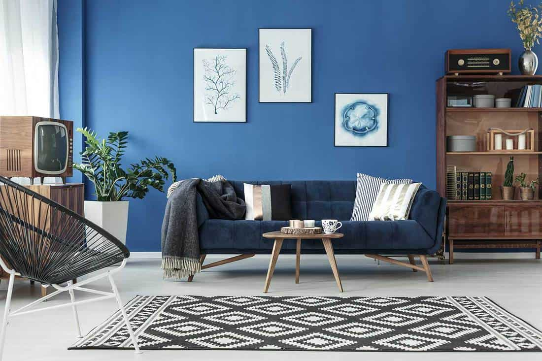 Lounge with blue sofa and patterned carpet