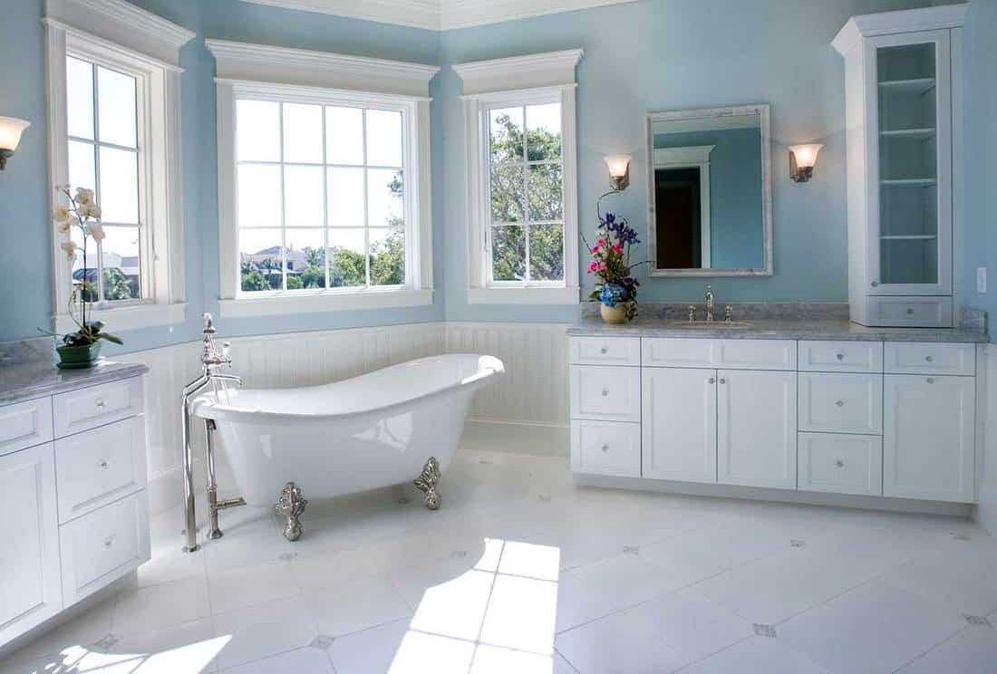 Luxury master bathroom with free standing bathtub