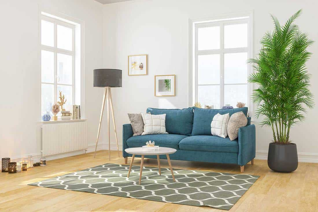 Modern living room interior with comfortable sofa and carpet on wooden floor