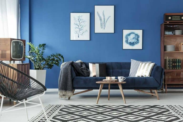 Navy blue decor of lounge with sofa, wooden furniture and patterned carpet, 15 Awesome Navy Sofa Living Room Ideas