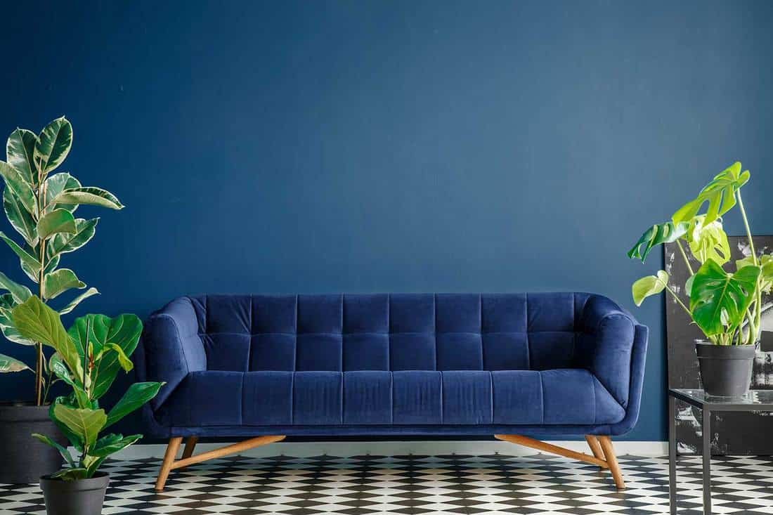 Navy blue settee against the wall in blue living room interior with plants on checkerboard floor
