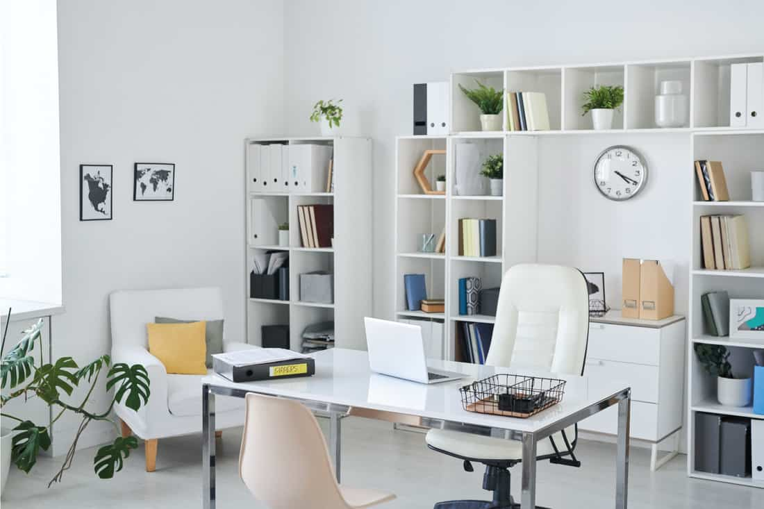 Office of business person with desk, armchair of professional, chair for clients, cubicle style shelves, clock, green plant