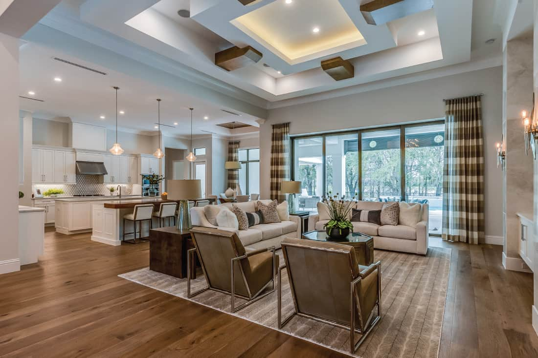 Open floor plan with high ornate coffered ceilings. Spacious great room with dropped ceiling