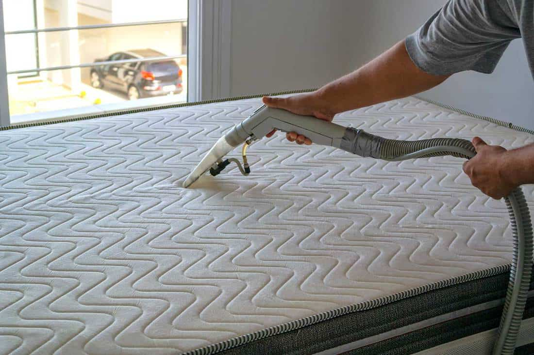 Person cleaning a mattress