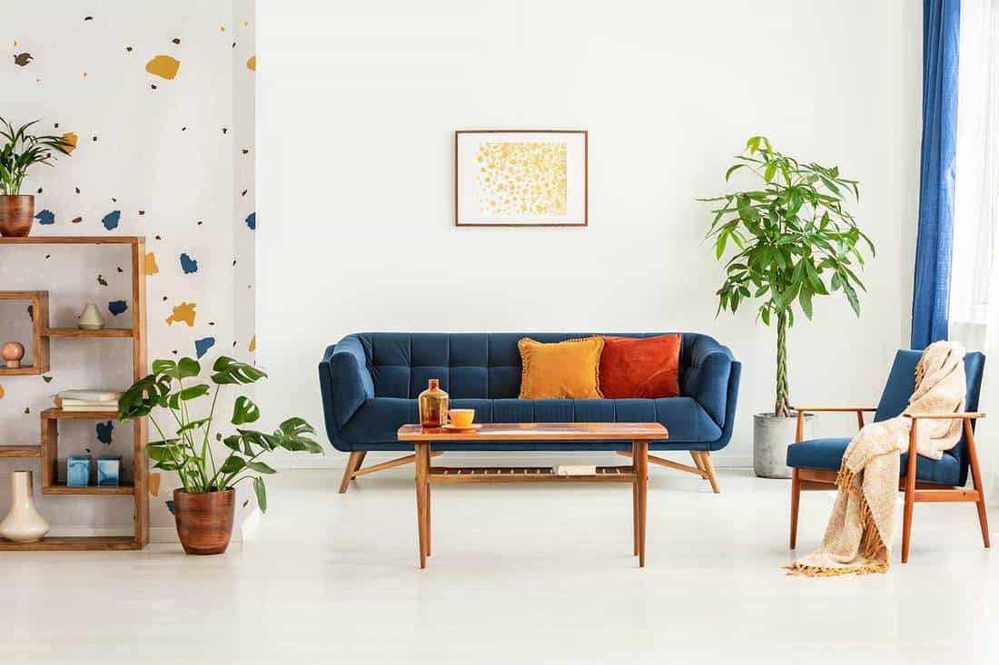 Poster above blue settee in white apartment interior with armchair, wooden table and plants