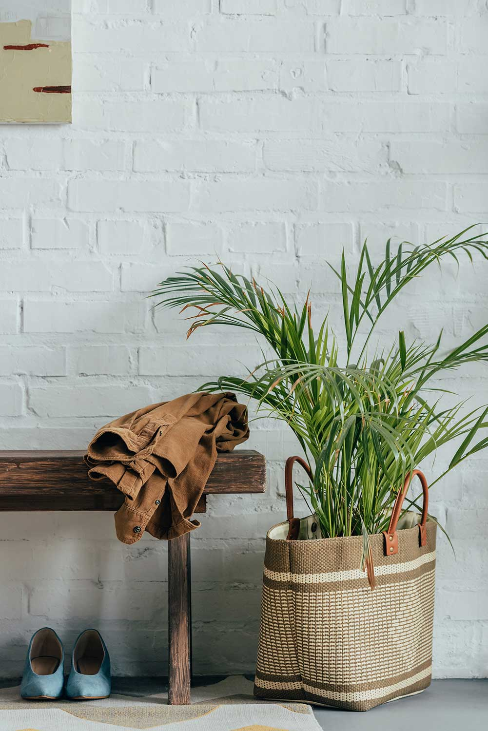 Potted palm tree in basket on floor with wooden bench in corridor at home