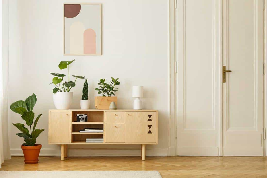 Retro style, wooden sideboard with green plants and a poster on a white wall in a simple apartment interior with herringbone hardwood floor