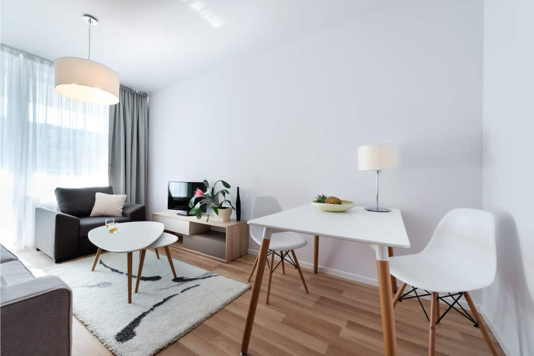 Robust grey furniture atop a shag carpet with bold black and grey accents. simplistic dining area furniture. barely bold