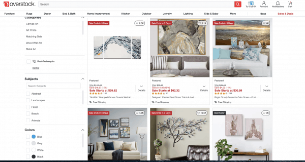 Overstock website product page