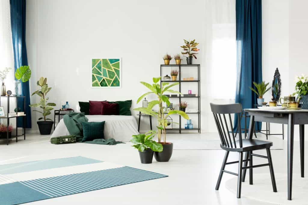 Small black dining table and chair in a bright white studio room interior with large bed, plants, ruggable rug and emerald decorations, Do Ruggable Rugs Work On Carpet?