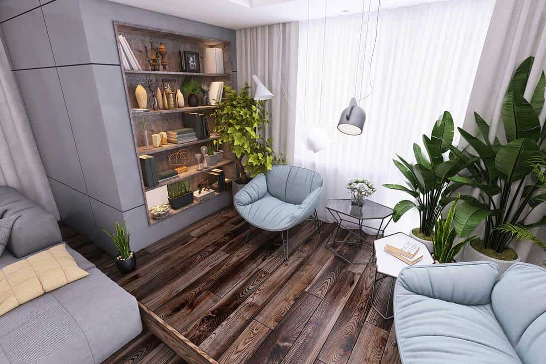 Small living room interior with pastel colored armchairs and coffee table and wooden shelve on parquet with plant and window in the background