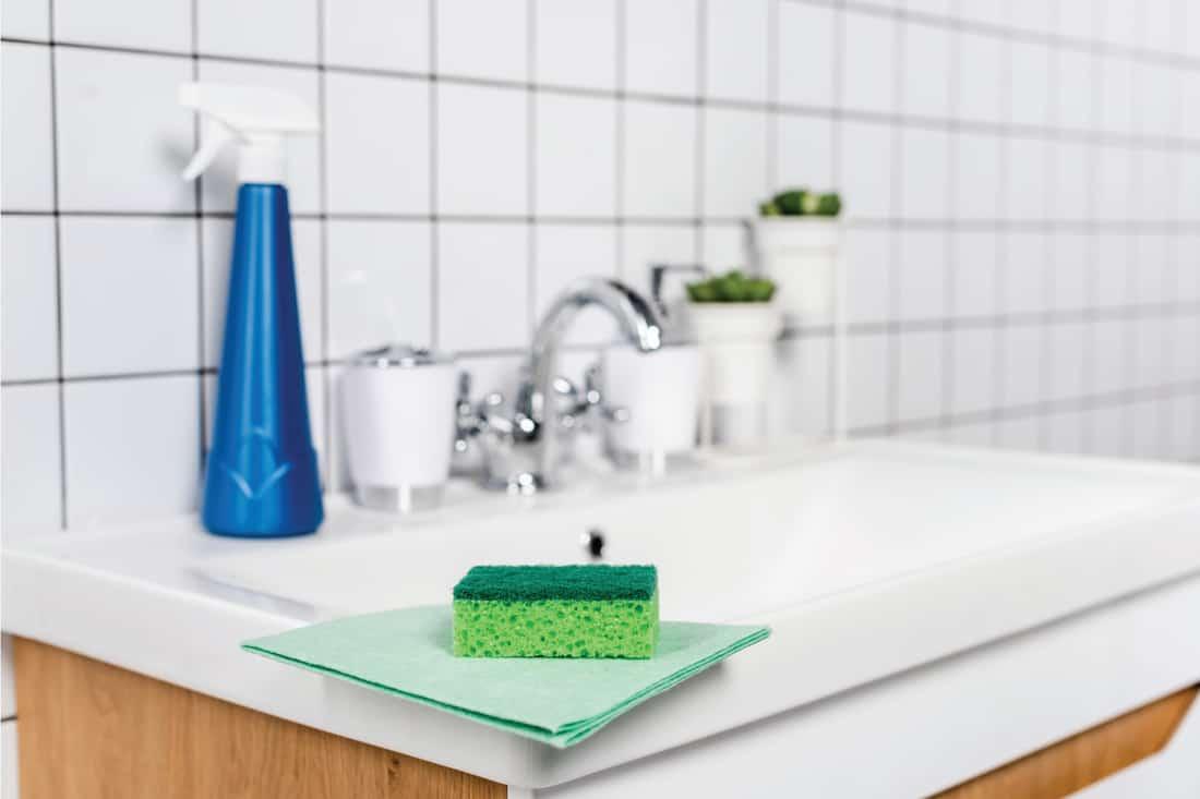 Sponge on rag near detergent on bathroom sink