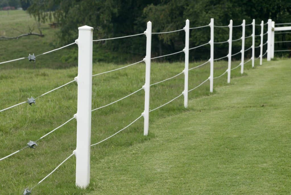 White electric Fence
