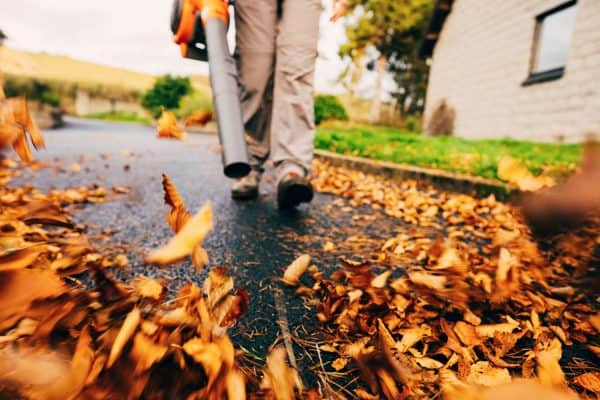 Read more about the article Leaf Blower Won't Start – What To Do?