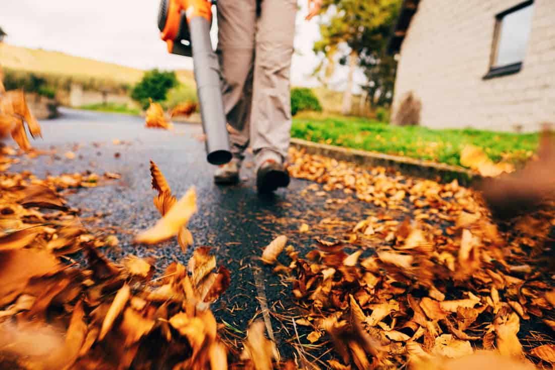 Woman using a leaf blower in the autumn to clear her driveway