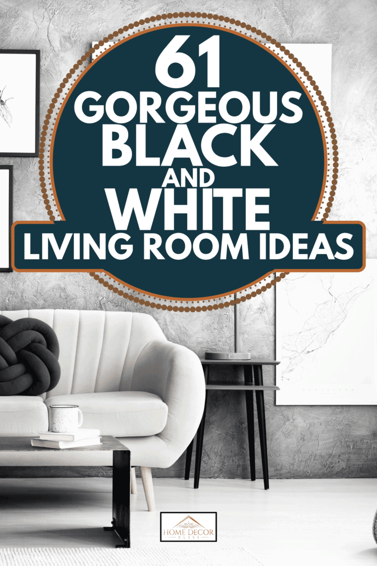 61 Gorgeous Black And White Living Room, Black And White Living Room Ideas