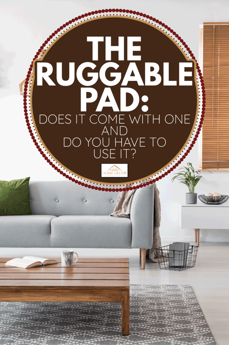 Posters on a wall in a living room interior with a sofa, low coffee table, and ruggable pad. The Ruggable Pad Does It Come With One And Do You Have To Use It