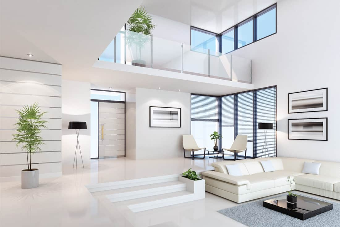 luxury white interior with foyer in glass railings, indoor plants. White With Black Accent Pieces