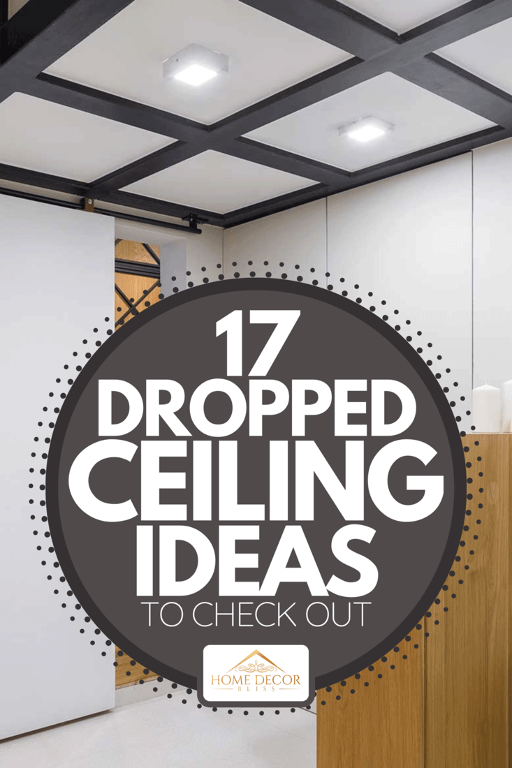 17 Dropped Ceiling Ideas To Check Out Home Decor Bliss