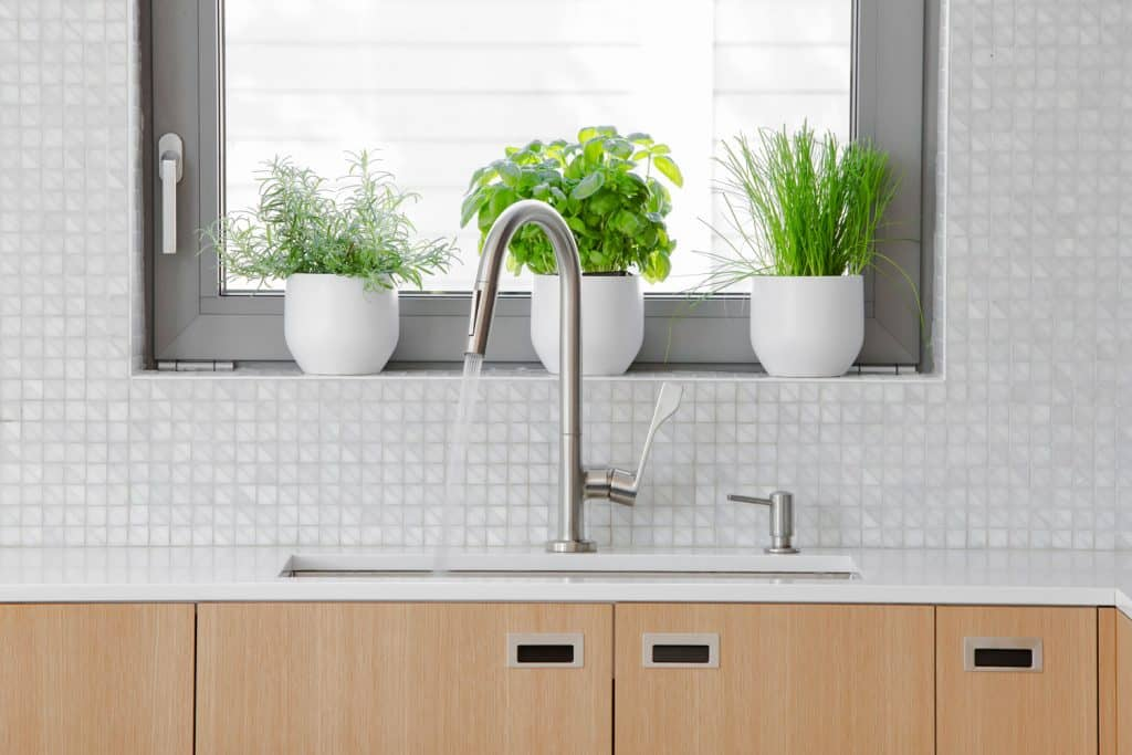 A modern kitchen with plants placed on the windowsill and a small tiled backsplash