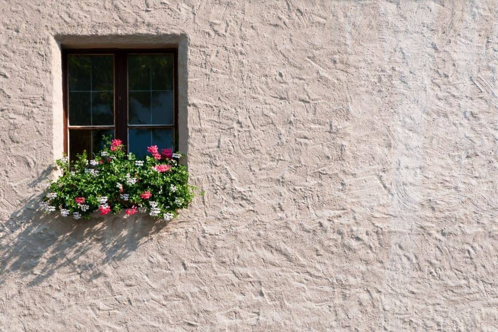 An up close photo of a Stucco wall and a window with flowers on the window sill