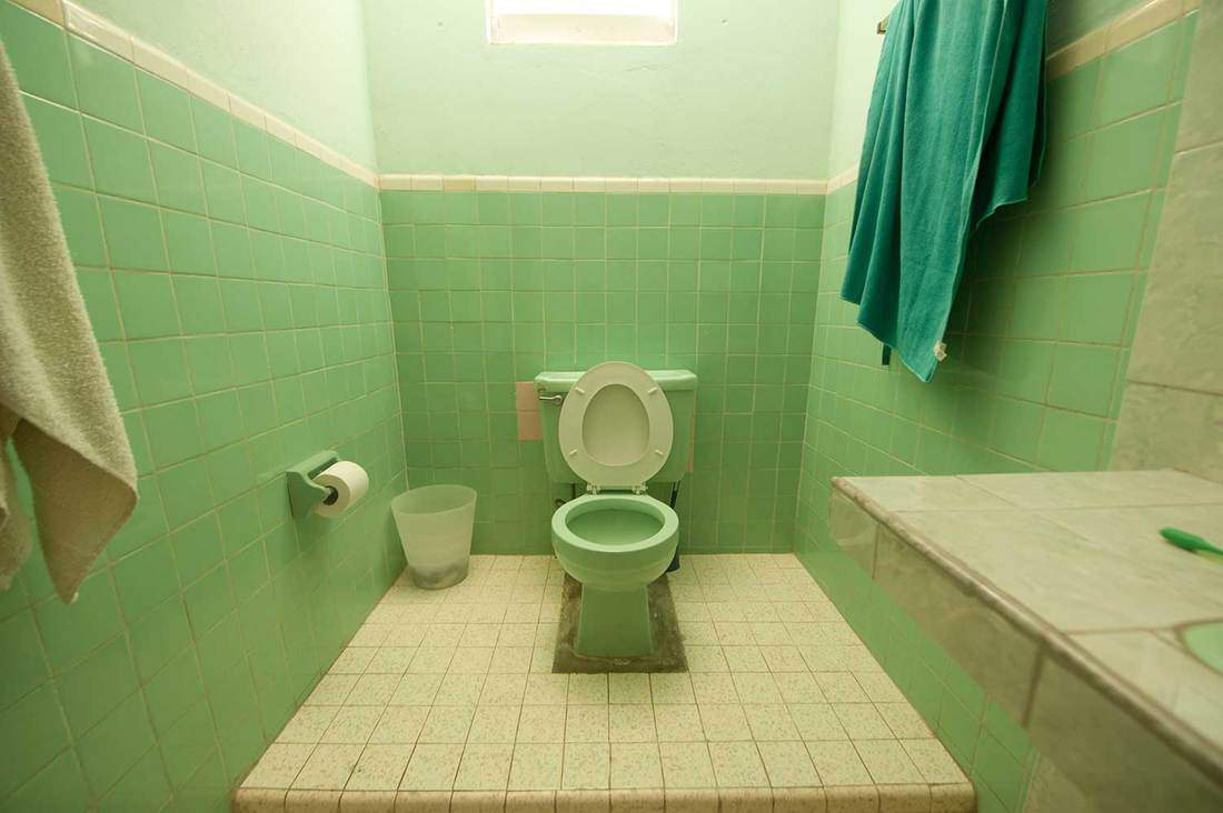 Bathroom tiled in white and green