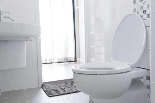 5 Of The Best Toilets For A Heavy Person
