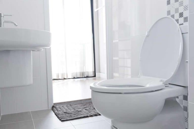 Bright bathroom interior with toilet and gray rug, 5 Of The Best Toilets For A Heavy Person